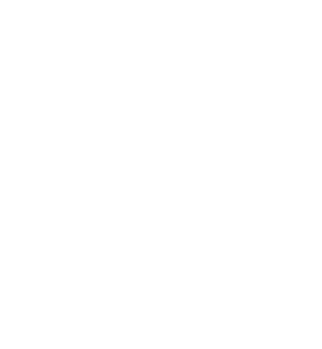 Wilson Video Pro logo